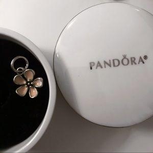 Pandora charm 🌸